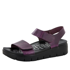 Alegria Playa Purple & Black Crazy Horse comfort sandals for women