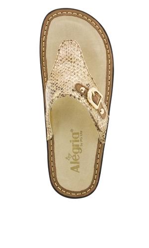 Alegria Vanessa Posh Gold Original Alegria Shoe Shop