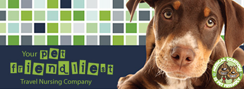 MedicalSolutions.com - Pet Friendly Travel Nursing